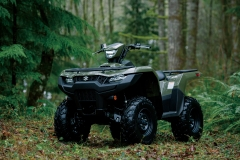 KingQuad_750_Action_02