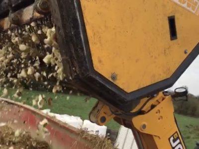 VdW Root Chopping Buckets